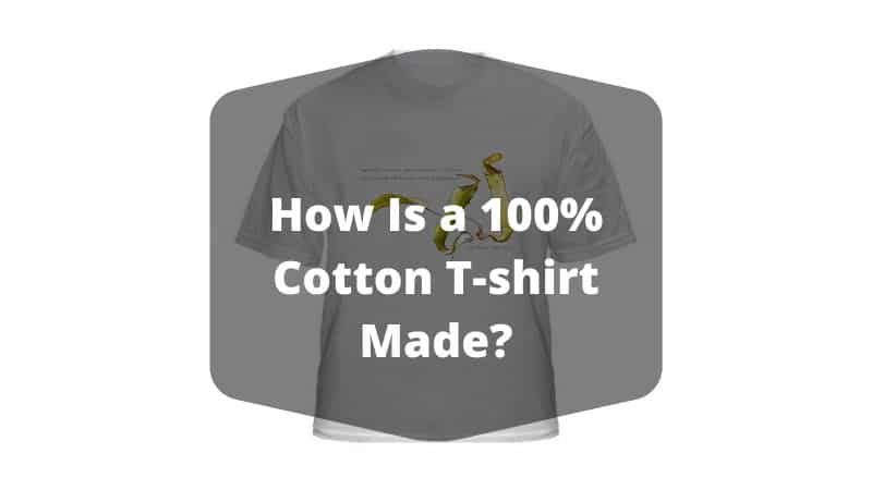 How Is a 100% Cotton T-shirt Made