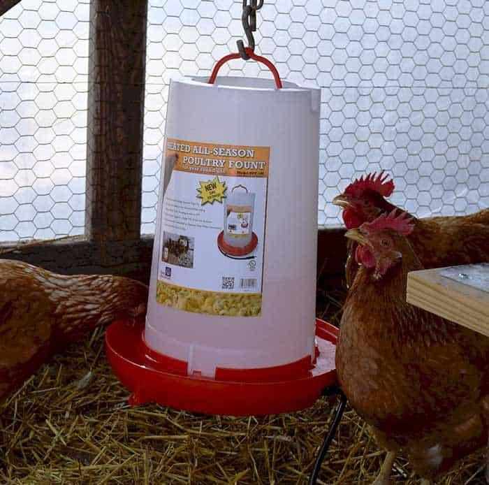 Chicken Watering System