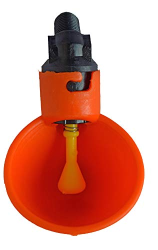 OUTWEST TRADING Automatic Chicken Waterer