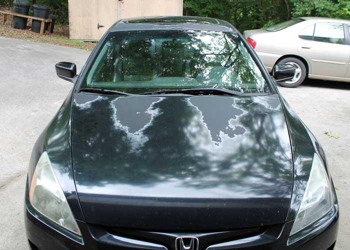 Apply Automotive Clear Coat